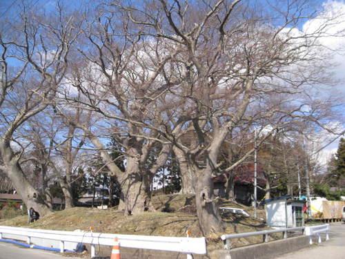 白山八幡神社